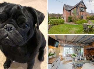 Ralph reviews a detached part oak framed house near Whitchurch
