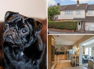 Ralph reviews a semi-detached family home in Newton