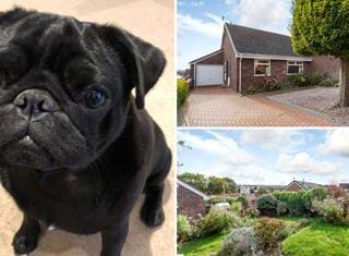 Ralph reviews a bungalow in Malpas