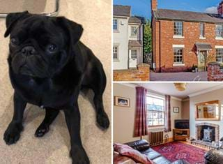 Ralph reviews a three bedroom semi-detached house in Holt