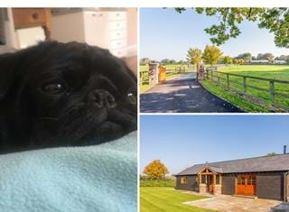 Ralph reviews a family home and holiday cottage in Marton