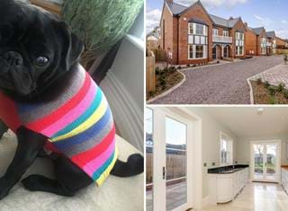 Ralph reviews a semi detached Edwardian style new build in Waverton
