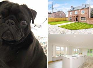 Ralph reviews a detached house in Bunbury Heath