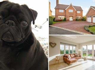 Ralph reviews a detached modern house in Stretton