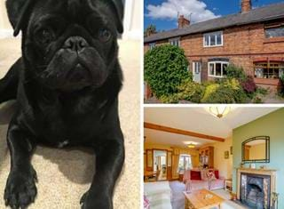 Ralph reviews a mid-terrace period cottage in Huxley