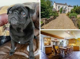 Ralph reviews a detached period property in Hargrave