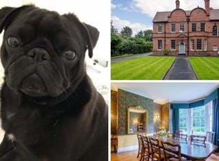 Ralph reviews a semi-detached Edwardian house in Chester