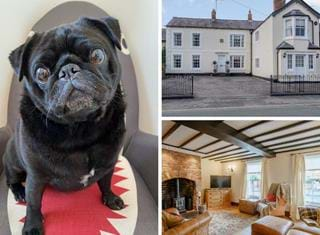 Ralph reviews a period terrace house in Holt