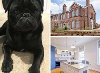 Ralph reviews a first floor apartment in a Victorian building